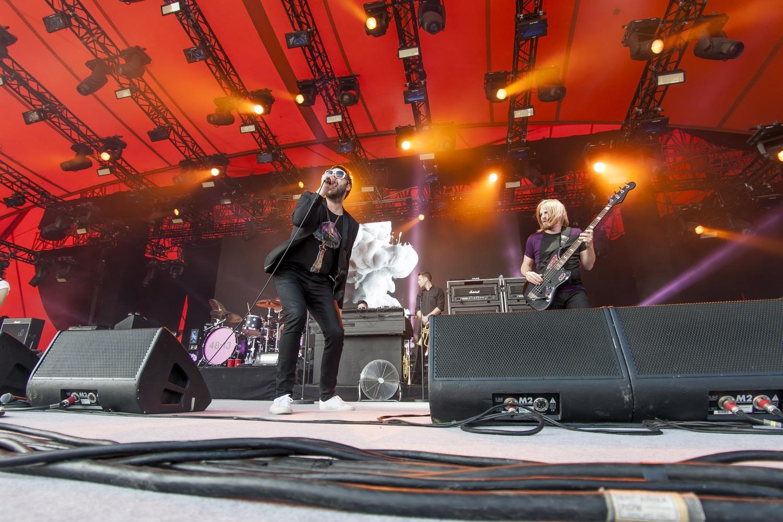 Fotojournalist i København Salg af koncertbilleder fra Roskilde Festival 2014.
